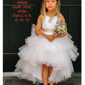 Silver Embroidered Lace Bodice Tulle Skirt Flower Girl Dress
