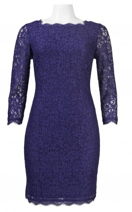 Adrianna Papell Long Sleeve Back Zipper Lace Dress